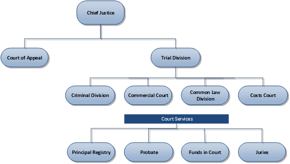 A structure diagram showing the Supreme Court organisational structure shows the Chief Justice at the head of the organisation.