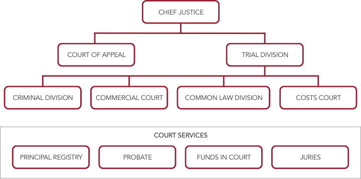 Supreme Court organisational structure shows the Chief Justice at the head of the organisation.